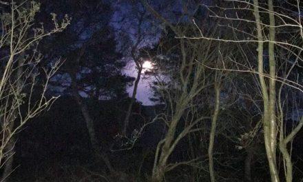 31st October – Gravel Ride – Spooky Night Ride